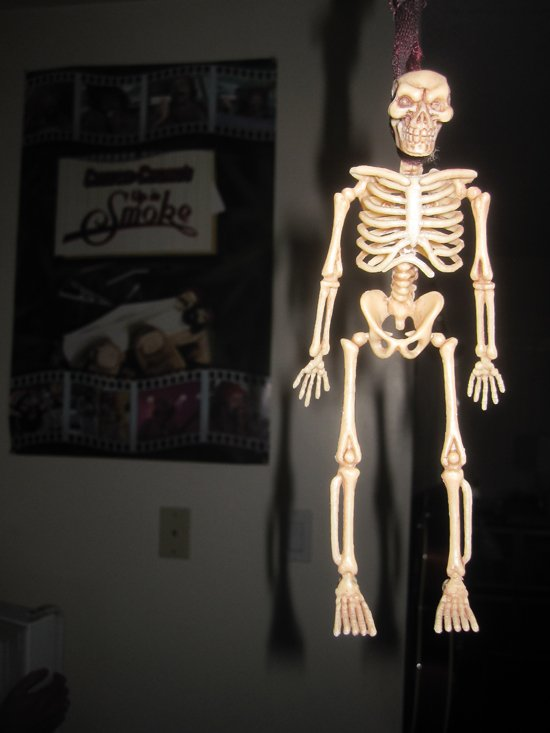7731kitchenskeleton.jpg